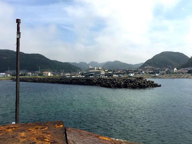 金谷港(かなやこう)の釣り場 |...