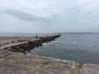 大貫港サムネイル