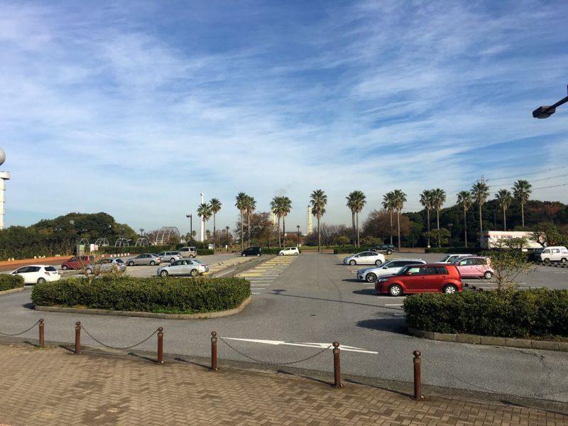 袖ヶ浦海浜公園の釣り場