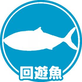 回遊魚の釣り場