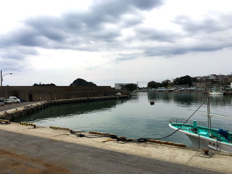 鴨川港の釣り場50