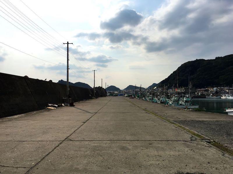 天津港の釣り場25