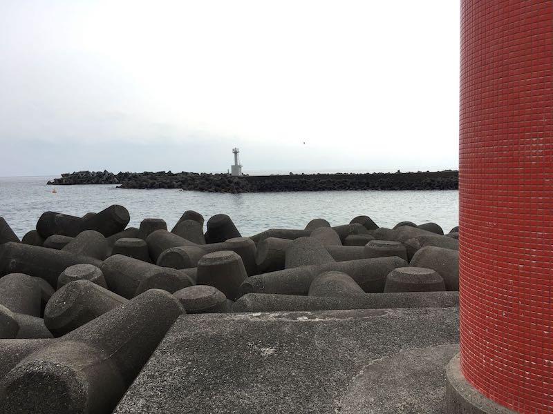 天津港の釣り場16
