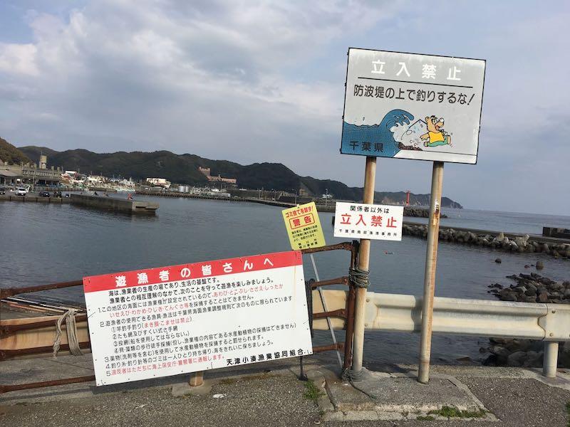 天津港の釣り場29