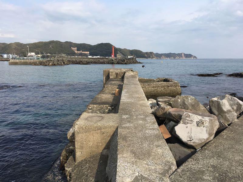 天津港の釣り場44