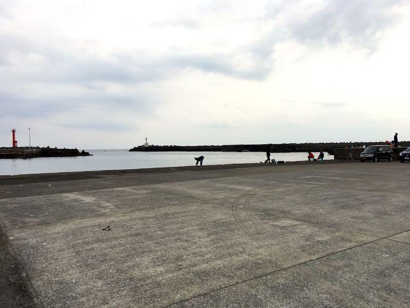 天津港の釣り場04