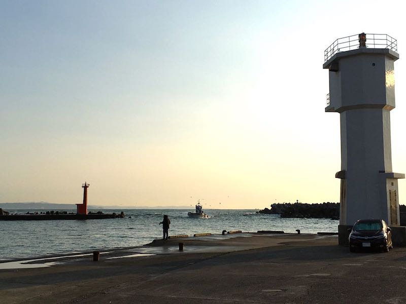 千倉港平舘港の釣り場03