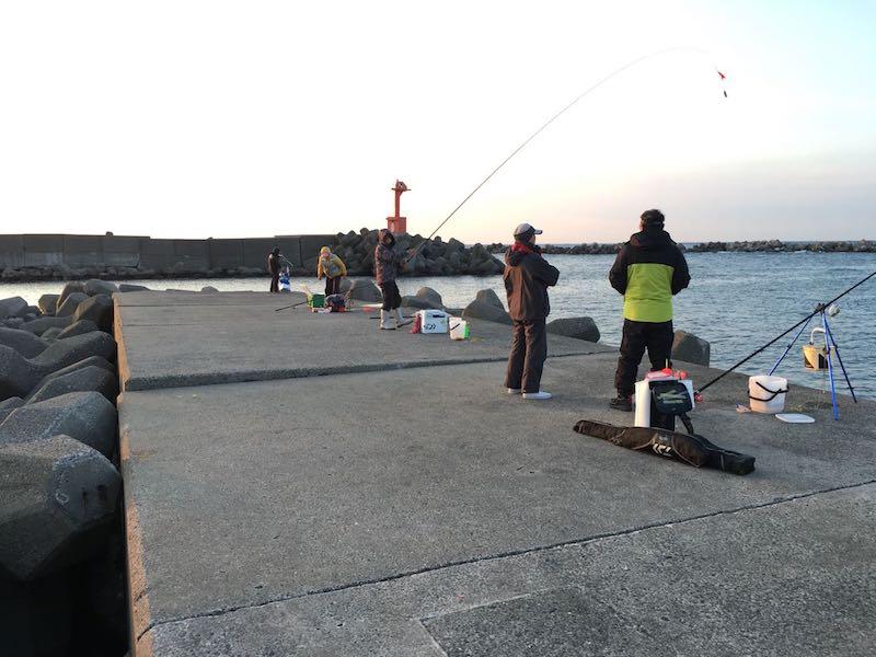 乙浜港の釣り場23