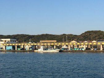 千倉港平舘港の釣り場15