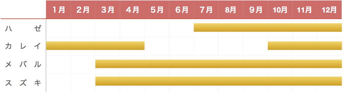 木更津内港公園の釣り物カレンダー