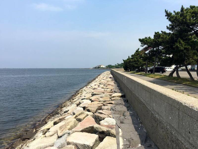 鳥居崎海浜公園の釣り場