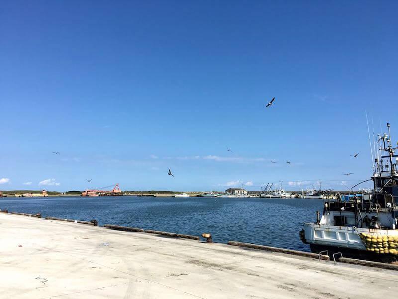 片貝港の釣り場42