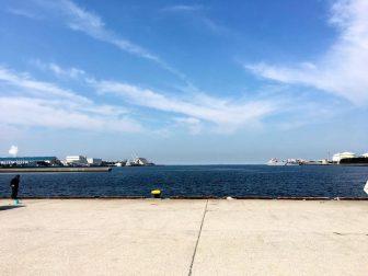 袖ヶ浦港 今井岸壁の釣り場5
