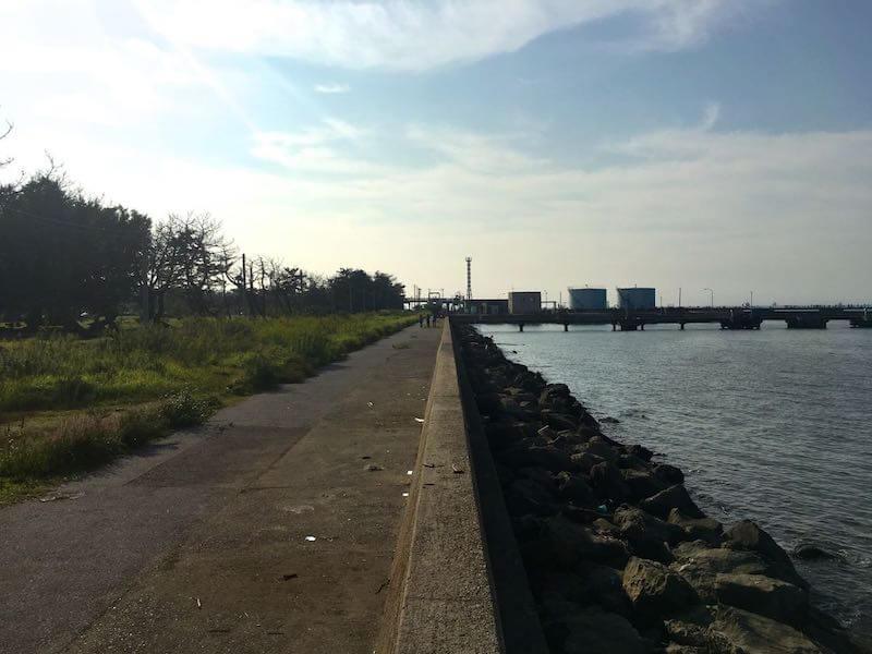 養老川河口の釣り場19