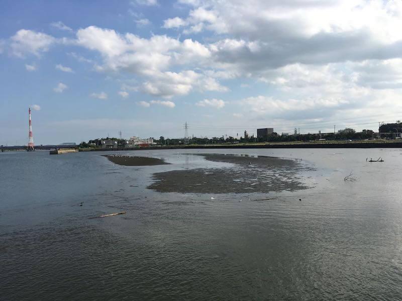 養老川河口の釣り場08