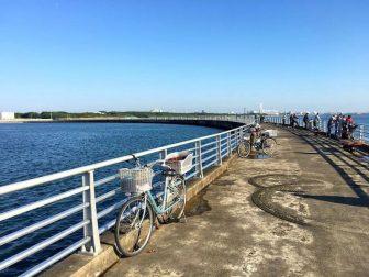 検見川浜の釣り場16