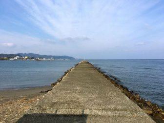 大賀堤防05
