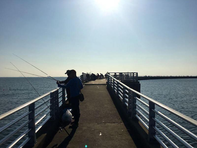 検見川浜の釣り場11