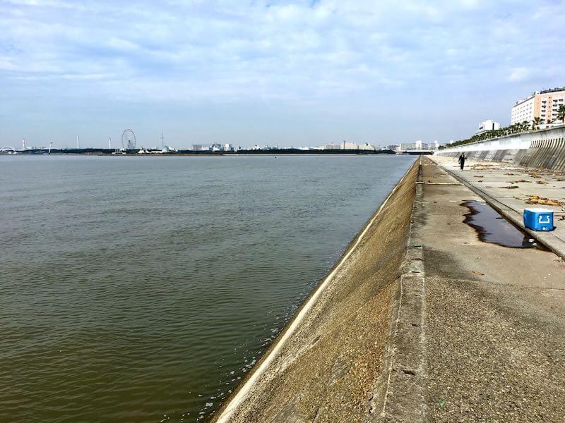 浦安電波塔下からディズニー裏の釣り場33