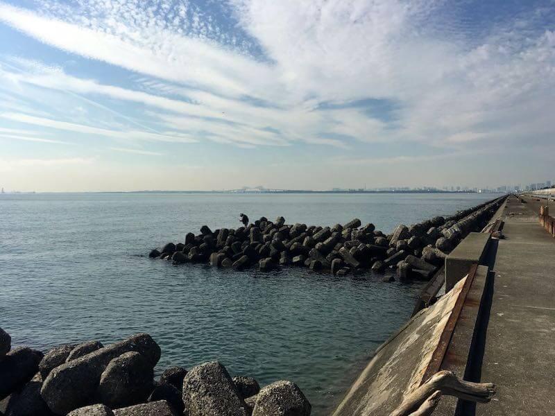 浦安電波塔下からディズニー裏の釣り場28