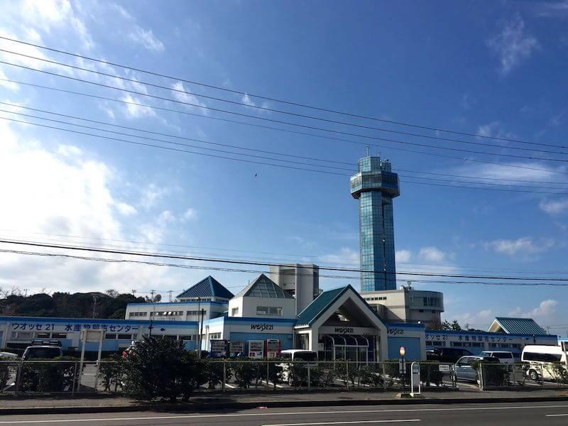 銚子外港の釣り場14
