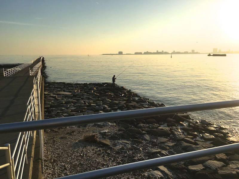 ふなばし三番瀬海浜公園の釣り場25