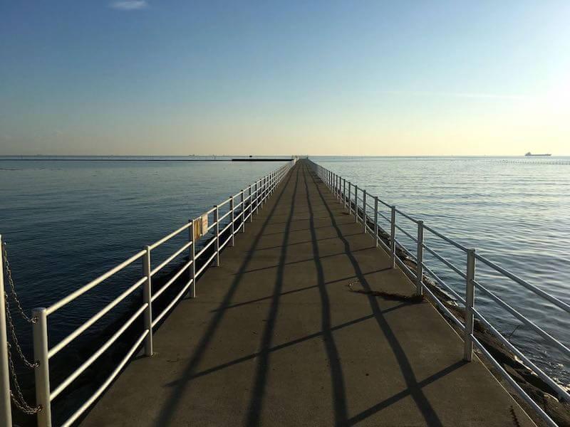 ふなばし三番瀬海浜公園の釣り場11