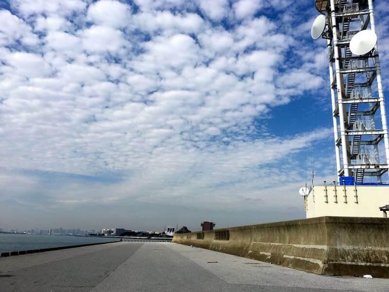 浦安電波塔下からディズニー裏の釣り場12