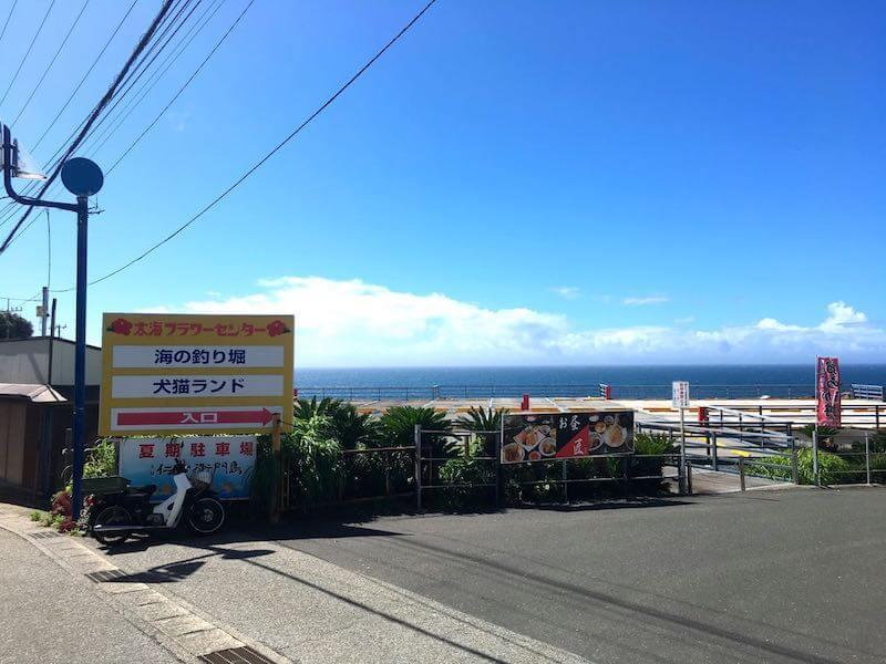 太海フラワー磯釣りセンター3