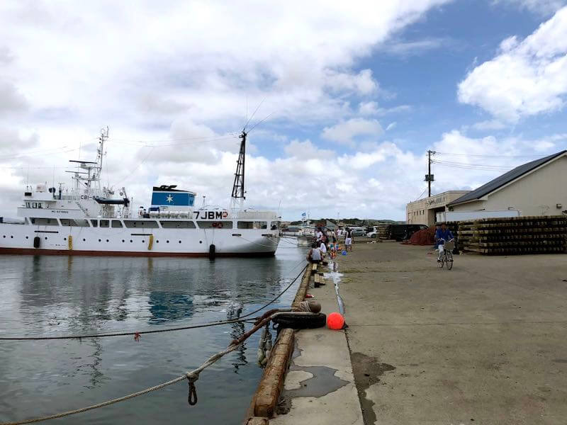 館山港の釣り場05