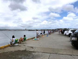 館山港の釣り場09